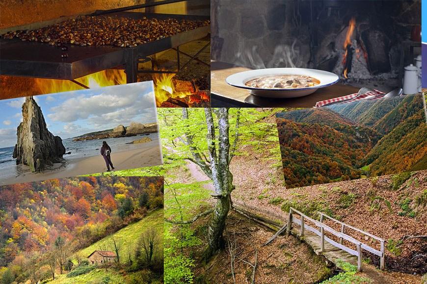 Ven a Asturias a disfrutar del mejor otoño